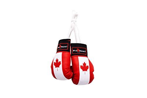 Pro Impact Mini Boxing Gloves - Miniature Punching Gloves -...